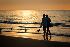 couple walking along the coast of Scheveningen at sunset (One Young World The Hague) Tags: couple walking coast scheveningen sunset thehague netherlands romance romantic coastline beach northsea summer love zuidholland thenetherlands nld