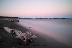 Along the Waterfront (DTB's...) Tags: esquimaltlagoon victoria vancouverisland sigma dpmerrill longexposure ndfilter canada britishcolumbia bc