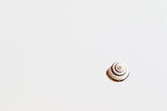 Minimalism (Arkle1) Tags: smileonsaturday miniinminimalism