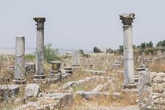 2018/07/09 13h00 ruines de Volubilis (Valéry Hugotte) Tags: 24105 antiquité maroc volubilis canon canon5d canon5dmarkiv colonne romain ruines fèsmeknès ma