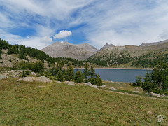 2018-09-16_9161750 © Sylvain Collet_DxO.jpg (sylvain.collet) Tags: mountains alpesdehauteprovence france wild montagne colmarslesalpes lacdallos nature