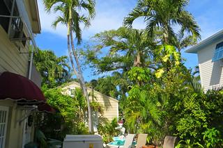 Key West (Florida) Trip 2017 7872Ri 4x6