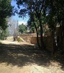(Gilbert-Noël Sfeir Mont-Liban) Tags: kesserwan montliban