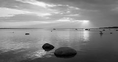 Baltic Sunsets #4 (Waiting) (gorelin) Tags: estonia eesti laulasmaa sea dog man waiting friends sony alpha a7ii a7 rocks skies sun sunrays sunset water 28mm fe28f20 black white blackwhite blackandwhite