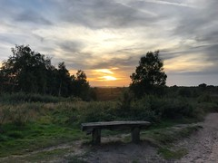 Ludshott Sunset (Marc Sayce) Tags: sunset sundown clouds trees bench ludshott common headley down grayshott hampshire national trust heathland summer autumn september 2018