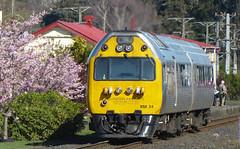beside the Blossom (geoffreyw@kinect.co.nz) Tags: dunedin silverfern railcar rm24 mosgiel blossom southern rail tour dunedinrailways