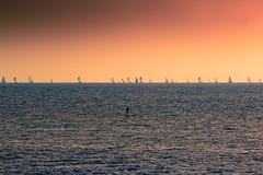 Sailing & Paddling on SUP at sunset - Tel-Aviv beach - Follow me on Instagram:  @lior_leibler22 (Lior. L) Tags: sailingpaddlingonsupatsunsettelavivbeach sailing paddling sup sunset telaviv beach