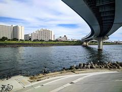 #231 Fishermen at the end of the road (tokyobogue) Tags: tokyo japan arakawa riverbank river nexus6p nexus 365project bridge water fishermen anglers curve