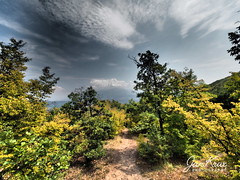 Hike Through The Woods (jan-krux photography - thx for 3 Mio+ views) Tags: hike walk woods forest trees baeume wald weg pfad wandern bulgarien bulgaria ruenski monatrery kloster wolken sky himmel farben colors omd em1 lanscape landschaft europe europa