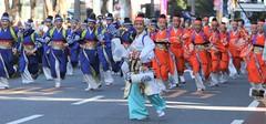 Tokyo Omotesando Yosakoi Dance (seiji2012) Tags: 原宿 スーパーよさこい 祭り 踊り superyosakoifestival tokyo shibuya harajyuku