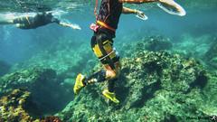 Swimrun Demain Rebelote aout 201800095 (swimrun france) Tags: swimrun calanques aout 2018 cassis freeswimrun provence trailrunning swimming open water hiking climbing