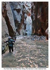 2D-TheNarrows-070 (stereo_eyz) Tags: virginriver zion nationalpark hiking narrows canyon water