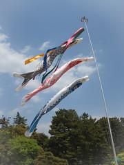 岡山-後樂園 (迷惘的人生) Tags: olympus omd em5 japan 日本 岡山 後樂園 風景