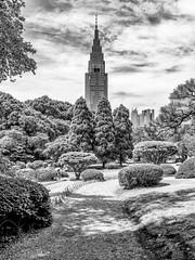 Tokyo (drasphotography) Tags: tokyo tokio japan monochrome monochromatic blackandwhite bw schwarzweis bianconero tower building trees drasphotography nikon d810 nikkor2470mmf28 travelphotography reisefotografie urban park city cityscape