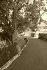 Peakshole water, Castleton, Derbyshire. (dave_attrill) Tags: peaksholewater castleton villagecentre peakdistrict nationalpark derbyshire hopevalley august 2018 sepia