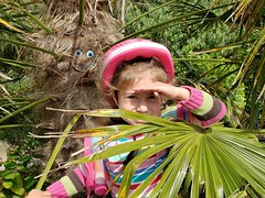 Watching Me, Watching You (Helen Orozco) Tags: happytree ma yucca watching hayle cornwall