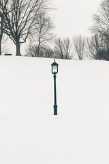 Alone (Lionelcolomb) Tags: villedequébec québec canada ca vert blanc neige seul alone green withe snow lampadaire floor lamp tree winter hiver canon sigma 1200d apple imac lightroom adobe vertical landsacape