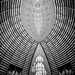 God's Architecture