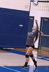 IMG_2248 (SJH Foto) Tags: girls high school volleyball teens team east stroudsburg varsity serve burst mode