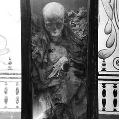 B&W Mummy 3 (ky_olsen) Tags: museodeelcarmen cdmx mexicocity mexico mummies blackwhite creepy