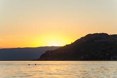 Late bath at sunset (bertrandwaridel) Tags: 2018 august lakegeneva lakeleman switzerland vaud vevey lake latebath summer sunset sunsetlight water suisse