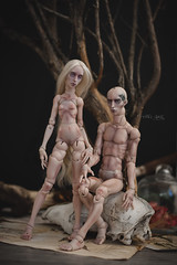 Cherl Dolls Cassiopeia and Angel (makeup and body blush) (firexia) Tags: cherldoll bjd blush body balljointeddoll bjdfaceup bjdphoto bjdmakeup bjdmake abjd faceup zaoll zaollmuse zaollluv