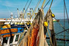 Hooksiel harbour (ro_ha_becker) Tags: