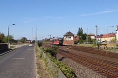 642 223 (Drehstromkutscher) Tags: db deutsche bahn regio haldensleben railway railfanning railways railroad train trainspotting trains eisenbahn