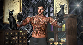 Lightning Wizard / Assistant De Foudre 5 FREE items on SL Treasure!