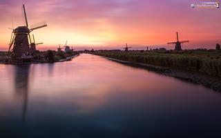 Kinderdijk on a summer's evening