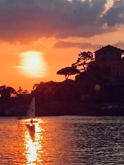 Recco (Valde65) Tags: sailing vela barche boats sunsets tramonti mare liguria recco