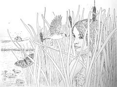 AtTheFarmPond (Alex Hiam) Tags: buckeye butterfly pen ink pencil illustration landscape farm barn girl rushes reeds cattails goldfinch birds drawing
