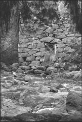 Latokartanonkoski (Cattail_) Tags: latokartanonkoski teijo river stream minolta caffenol caffenolc xg1 hp5 finland