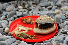 Fast Food Beach-Style (MrHRdg) Tags: wales northwales lleynpeninsula gwynedd nantgwrtheyrn burger chips beach seaweed rock stone cheeseburger penllŷn