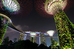 REVISITED (Ani_pics) Tags: singapore travel 1635 nightshot