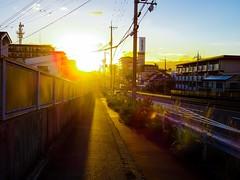 (takashi ogino) Tags: pentax q7 justpentax digital color 01standardprime sunset light settingsun
