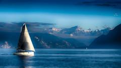 Prendre le large... bientôt !! (Fred&rique) Tags: lumixfz1000 photoshop raw suisse lausanne lac voilier montagnes paysage large bleu ciel eau voile