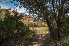 Trail - Palo Duro Canyon State Park - Randall County - Texas - 14 October 2017 (goatlockerguns) Tags: canyon view palo duro state park randall county texas usa unitedstatesofamerica south southern southwest desert nature natural hiking hills