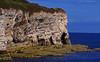 Looking Out (wontolla1 (Septuagenarian)) Tags: flamborough head east riding yorkshire cliff face chalk limestone caves bay coast north landing seaside bempton