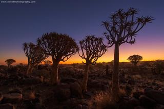 Evening Glow @ Keetmanshoop, Namibia