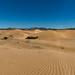 Dunes de Mongol Els, Mongolie