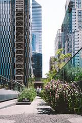 Hudson Yards / High Line (Thomas Ohlsson Photography) Tags: chelsea fujifilmxt2 fujinonxf1855mmf284rlmois highline hudsonyards manhattan newyork park thehighline thomasohlssonphotography walking
