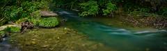 Wasser im Fluss (Jensens PhotoGraphy) Tags: deutschland germany badenwürttemberg bach grün green landschaft landscape langzeitbelichtung pflanzen wasser water baum natur nature