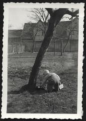 Archiv R106 Ostereiersuche, Burgdorf i.H., Ostern 1948 (Hans-Michael Tappen) Tags: archivhansmichaeltappen fotorahmen outdoor garten kleinkind junge child ostern ostereier ostereiersuche kleidung mütze 1948 osterkörbchen körbchen eierkörbchen 1940er holzzaun gartenzaun 1940 osternest nest
