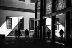 20180912_DSC9320.jpg (Lea Ruiz Donoso) Tags: silueta silhouette silhouettes siluetas black white blanco negro monochrome monocromo arquitectura spain españa madrid learuizdonoso sony museo museum museoreinasofía sombra shadows sombras backlight contraluz crystal reflejos reflection architecture ventana windows