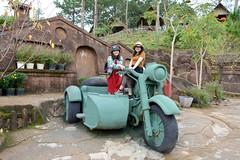 _DSC6681 (Quyr) Tags: dalat vietnam green smoke frog cloud tree forest langbiang lamdong portrait thunglungvang duonghamdatset