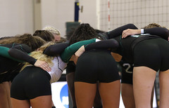 Volleyball 1 (wilmuwildcats) Tags: volleyball jumping spiking bear delaware unitedstates