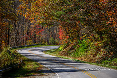 Winding Autumn Road (tclaud2002) Tags: road mountain mountainroad windingfall autumn colorsfallcolors foliage fallfoliage landscape nature mothernature outdoors northcarolina andrews usa