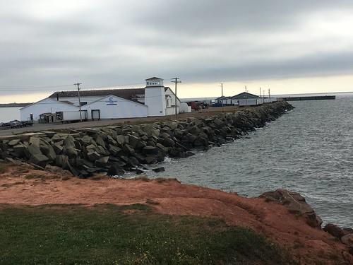 Prince Edward Island shoreline near the Confederation Bridge.