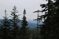 Tidbits Mountain-039 (rozoneill) Tags: tid bits mountain mckenzie river blue lake willamette national forest hiking oregon